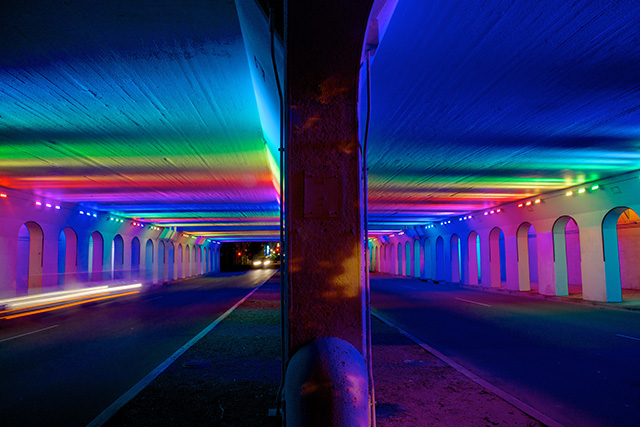 Light Rails by Bill FitzGibbons