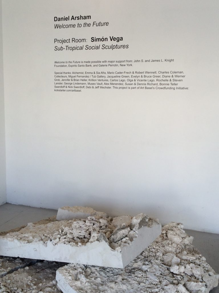 Daniel Arsham_Welcome to the Future10