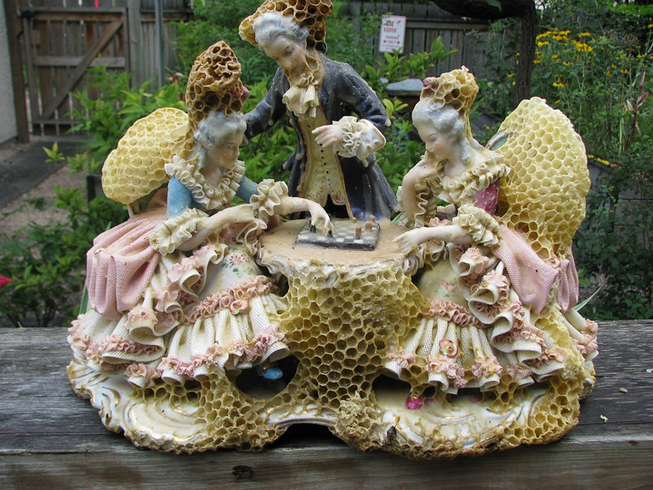 Aganetha Dyck Bee Comb Sculptures